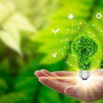 Consciência ambiental: a hora é agora!